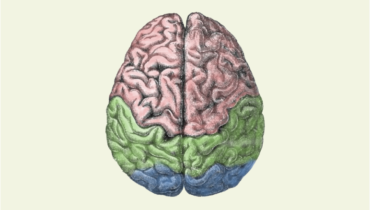 Treatment for Alzheimer disease
