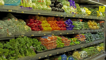 GMO - Gentically modified foods and what they do