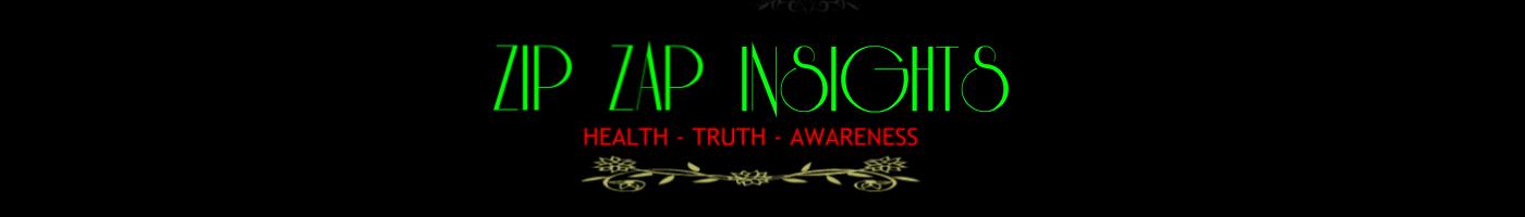 Zip Zap Insights