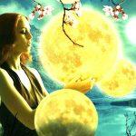 Life Destiny astrology report